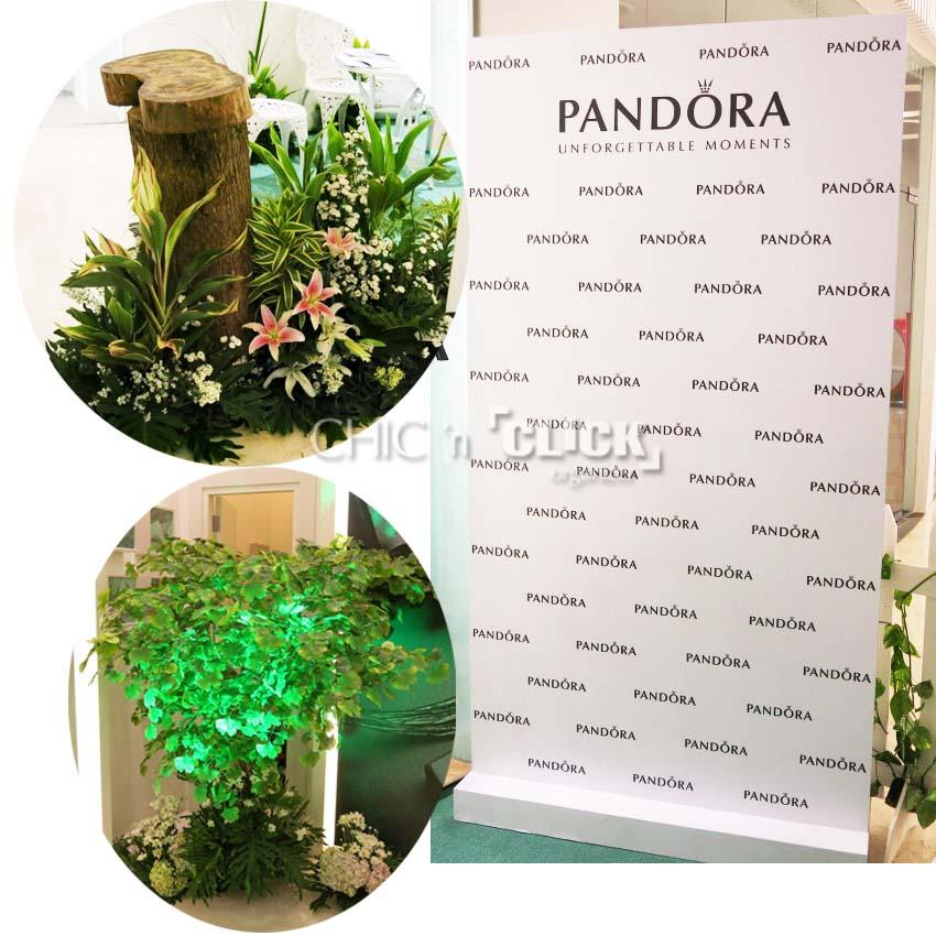 pandora7